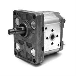 Pompa Ad Ingranaggi Gruppo 2 - Versione Standard -