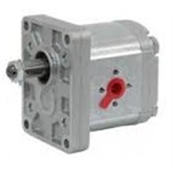 Pompa Ad Ingranaggi Gruppo 2 - Versione Standard - 16cm3 SX